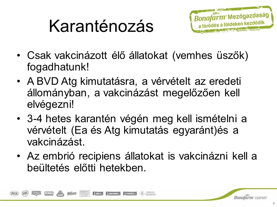 Karanténozás Csak vakcinázott élő állatokat (vemhes üszők) fogadhatunk!