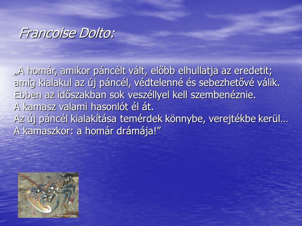 """Francoise Dolto: """"A homár, amikor páncélt vált, előbb elhullatja az eredetit; amíg kialakul az új páncél, védtelenné és sebezhetővé válik."""