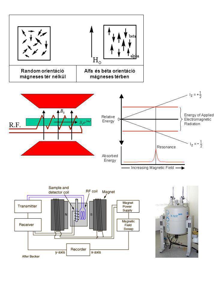 Alfa és béta orientáció mágneses térben