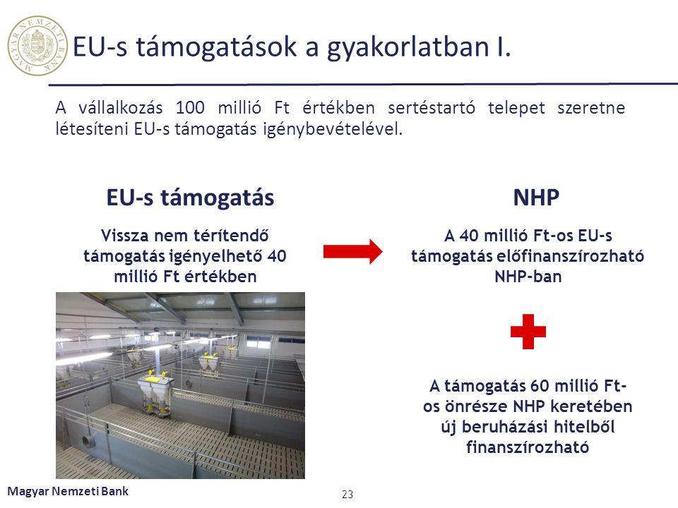 EU-s támogatások a gyakorlatban I.