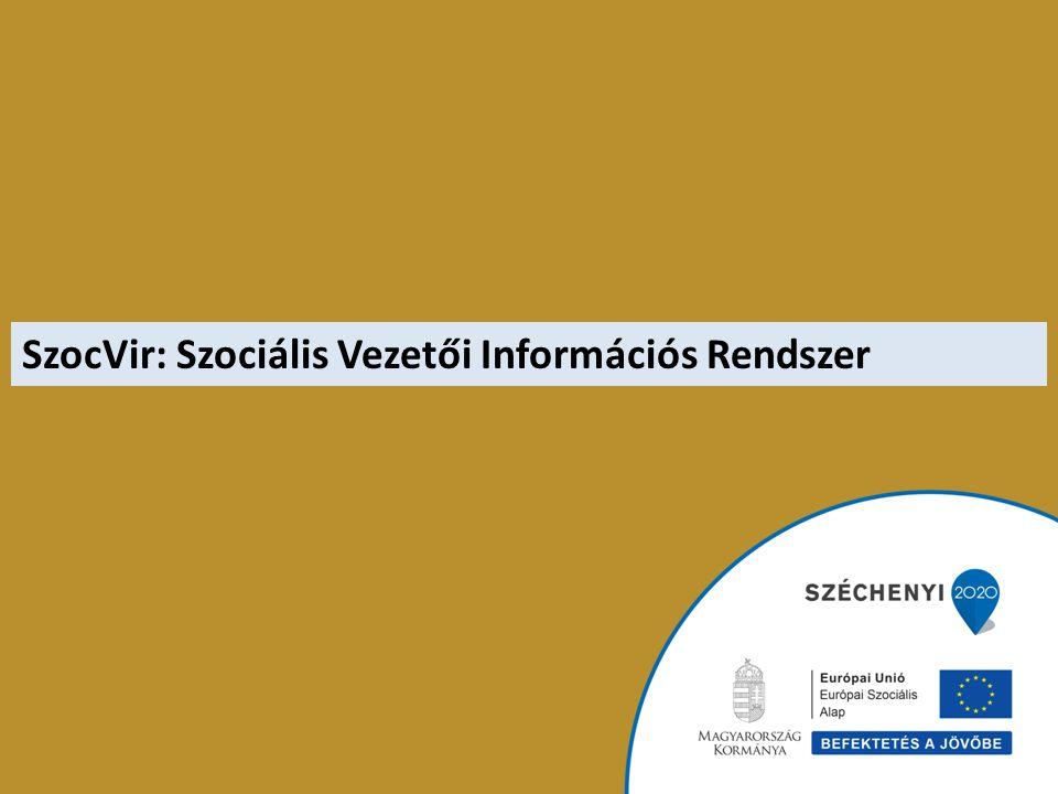 SzocVir: Szociális Vezetői Információs Rendszer