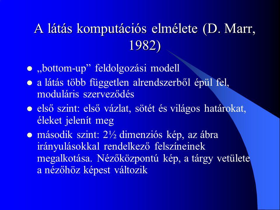 A látás komputációs elmélete (D. Marr, 1982)