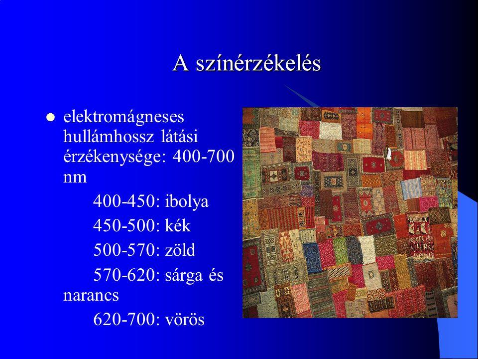 A színérzékelés elektromágneses hullámhossz látási érzékenysége: 400-700 nm. 400-450: ibolya. 450-500: kék.