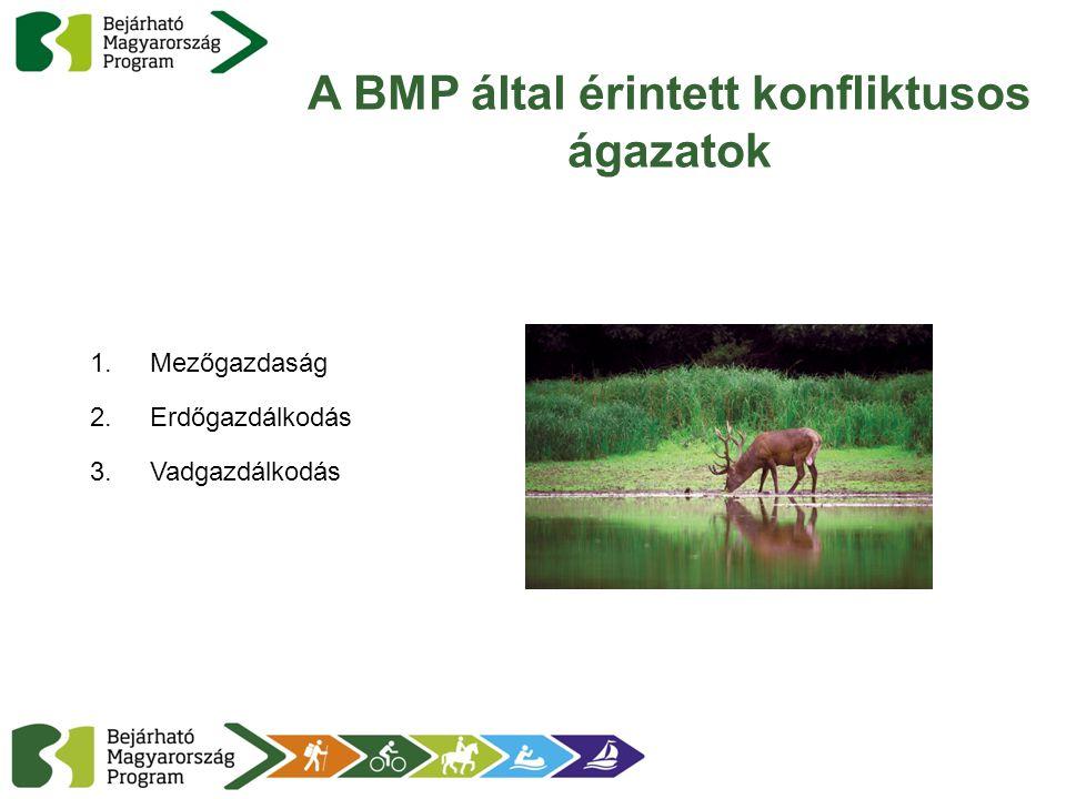 A BMP által érintett konfliktusos ágazatok