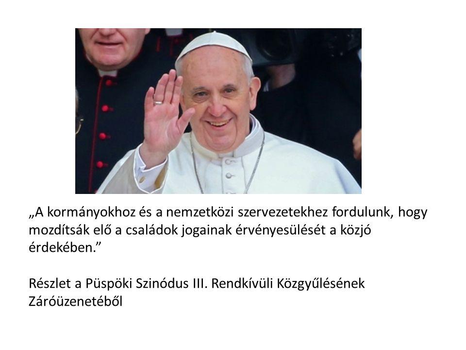 """""""A kormányokhoz és a nemzetközi szervezetekhez fordulunk, hogy mozdítsák elő a családok jogainak érvényesülését a közjó érdekében. Részlet a Püspöki Szinódus III."""