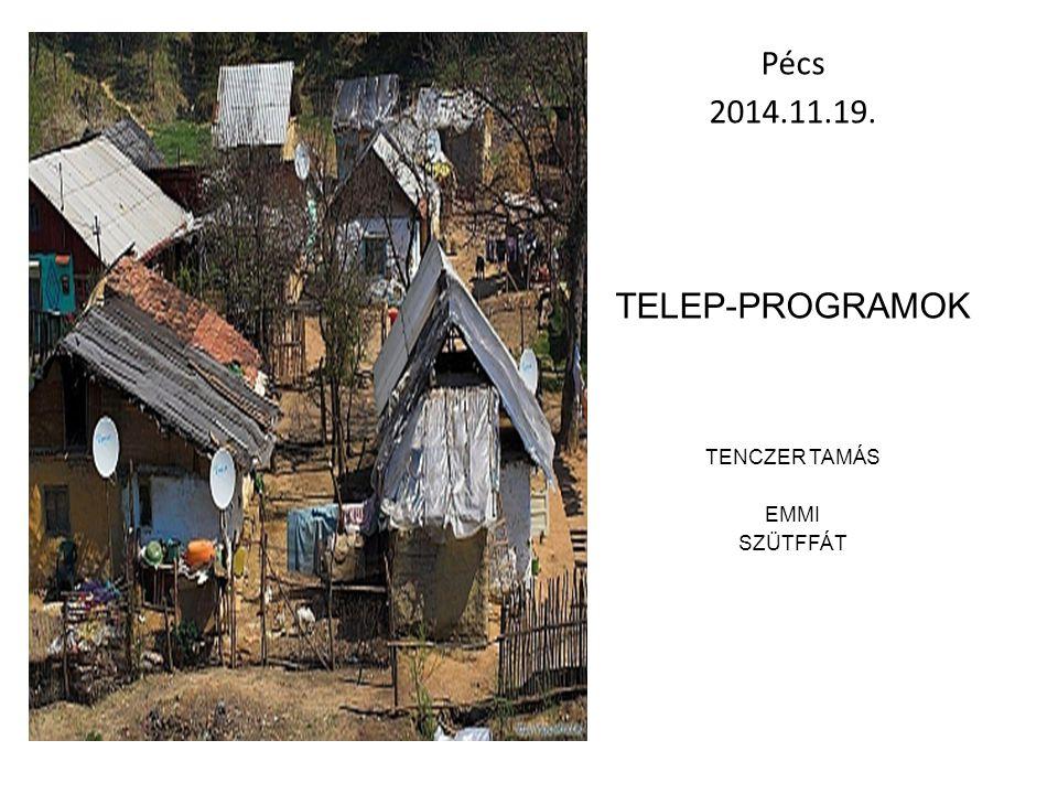 Pécs 2014.11.19. Telep-programok Tenczer tamás EMMI SZÜTFFÁT