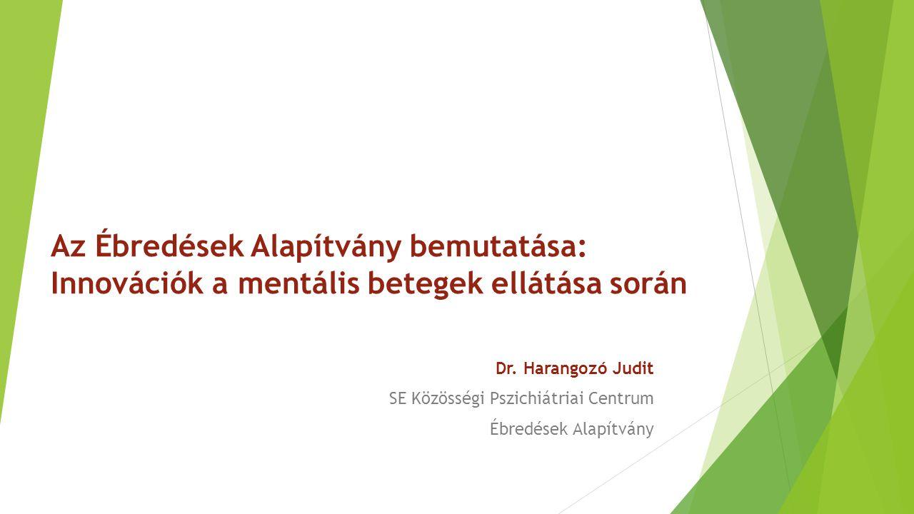 Az Ébredések Alapítvány bemutatása: Innovációk a mentális betegek ellátása során