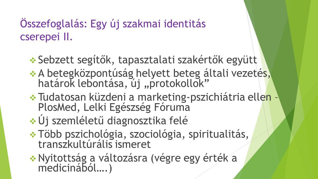 Összefoglalás: Egy új szakmai identitás cserepei II.