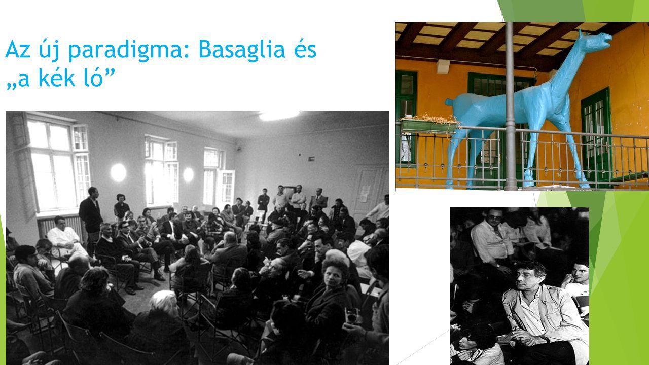 """Az új paradigma: Basaglia és """"a kék ló"""