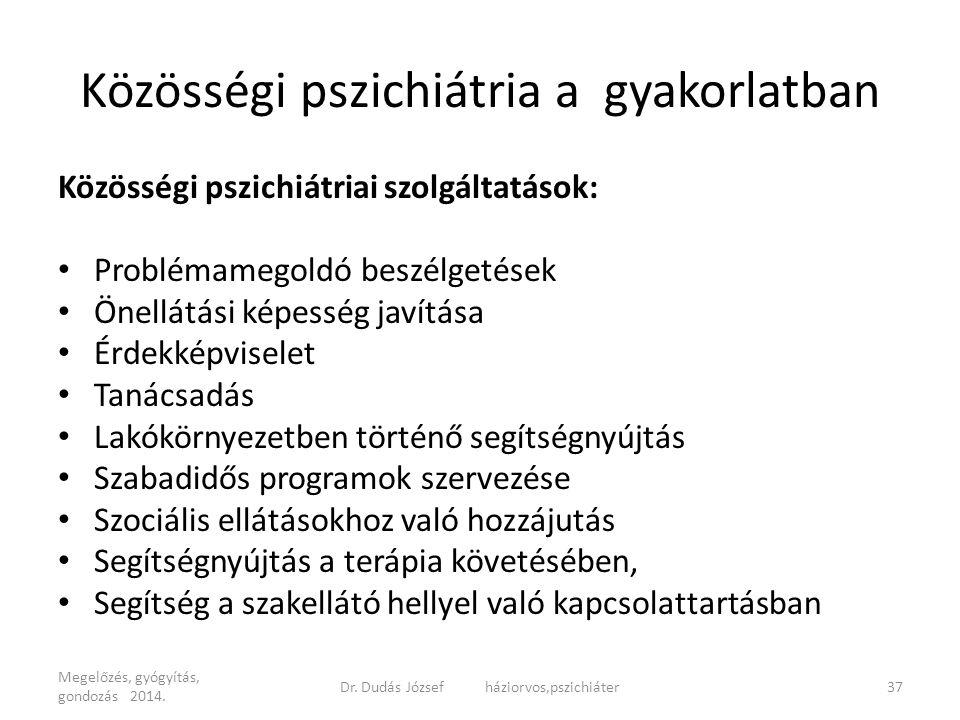 Közösségi pszichiátria a gyakorlatban