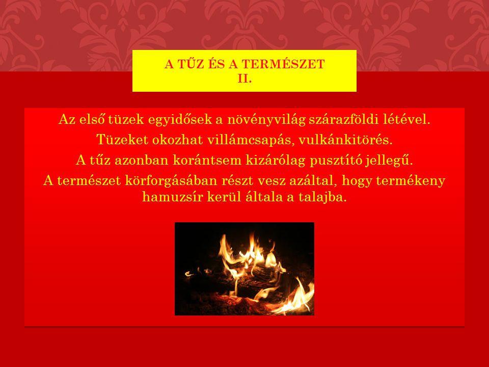 A tűz és a természet II.