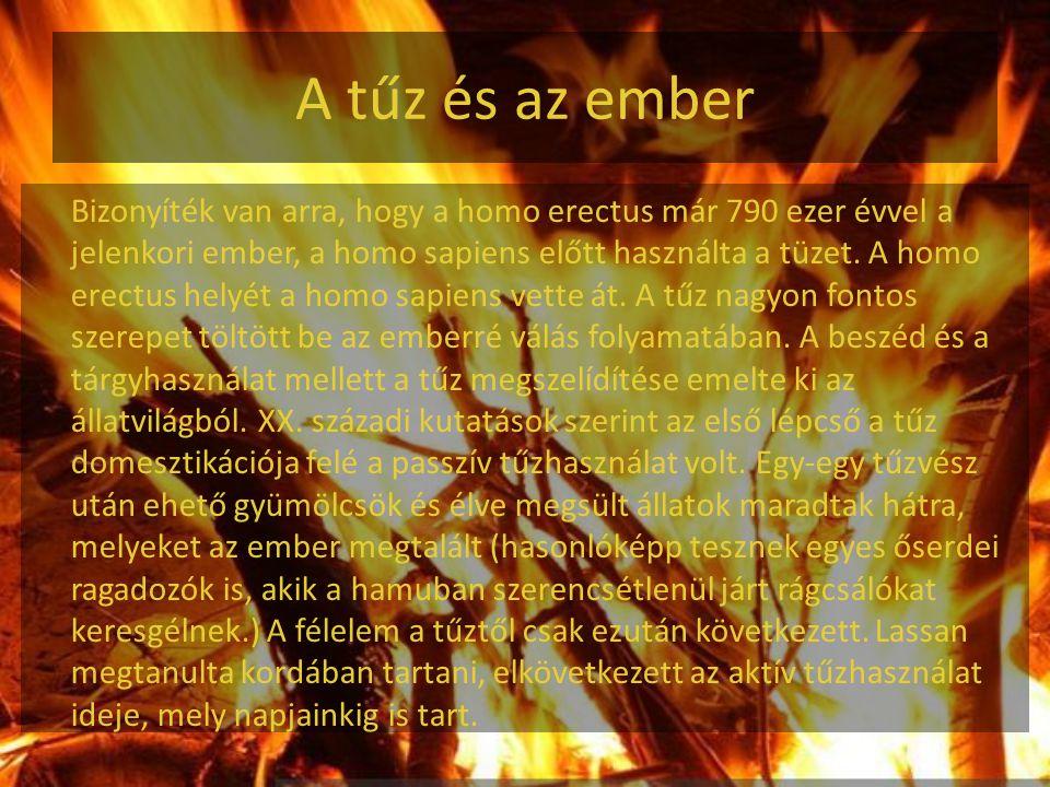 A tűz és az ember