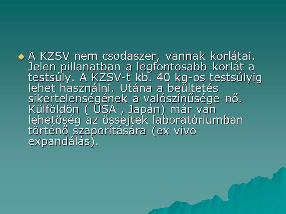 A KZSV nem csodaszer, vannak korlátai