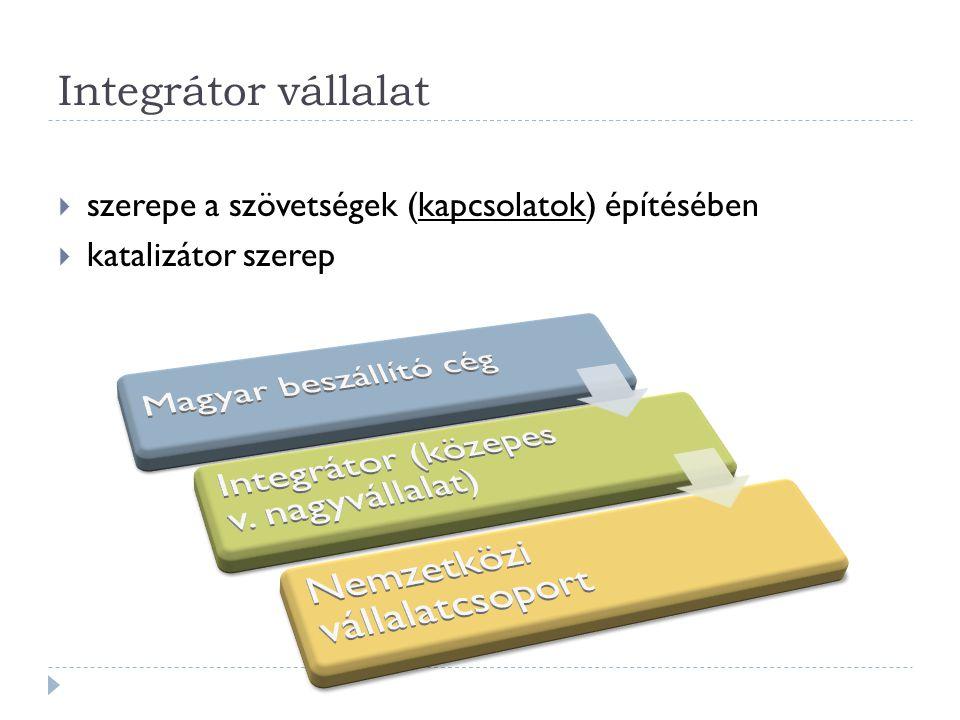 Integrátor (közepes v. nagyvállalat)