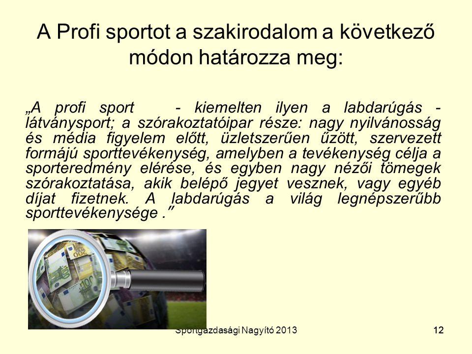 A Profi sportot a szakirodalom a következő módon határozza meg:
