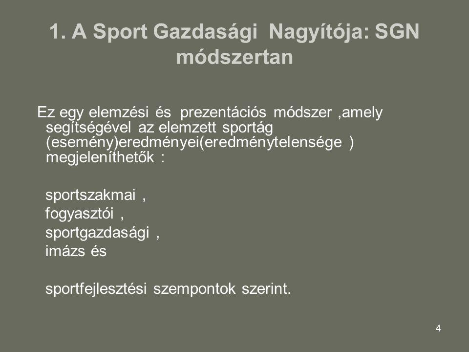 1. A Sport Gazdasági Nagyítója: SGN módszertan
