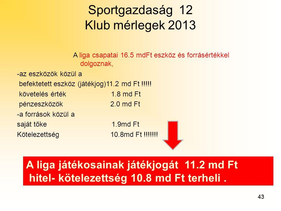 Sportgazdaság 12 Klub mérlegek 2013