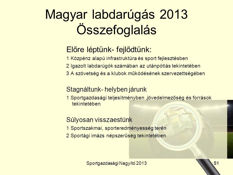 Magyar labdarúgás 2013 Összefoglalás