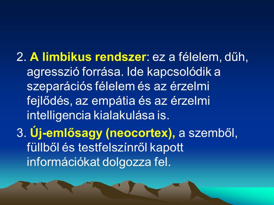 2. A limbikus rendszer: ez a félelem, dűh, agresszió forrása