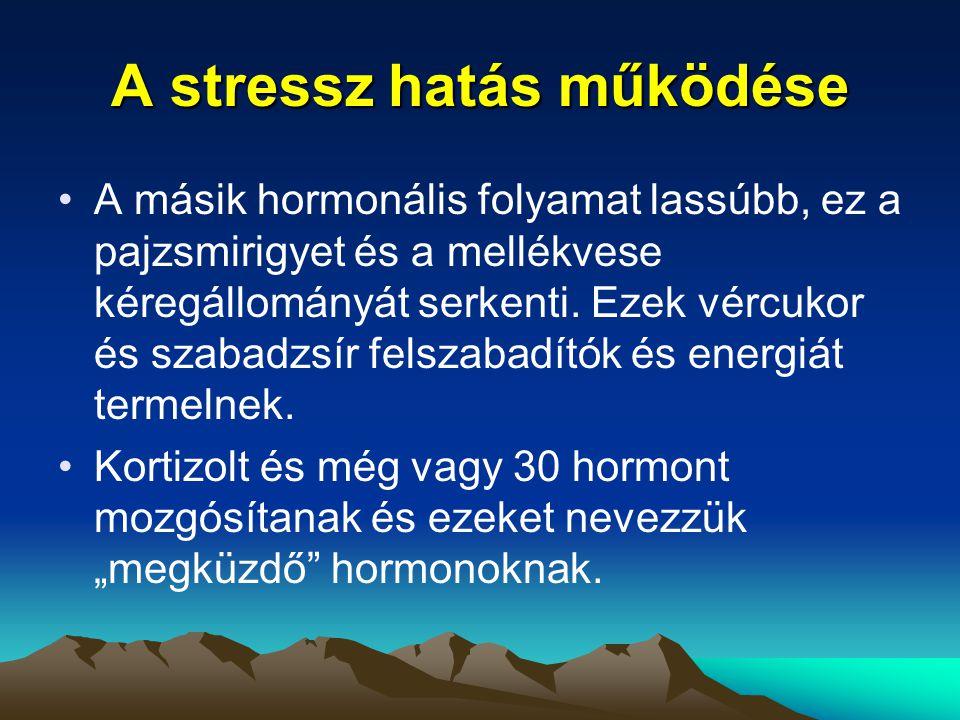 A stressz hatás működése