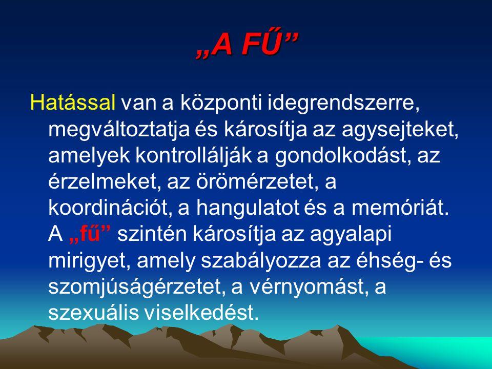 """""""A FŰ"""