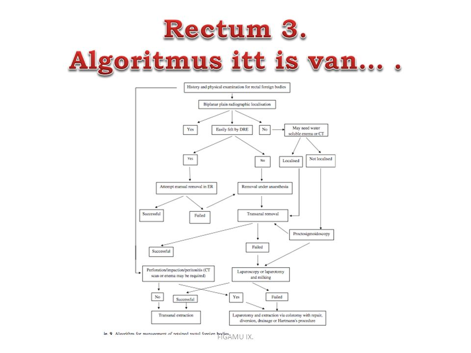 Rectum 3. Algoritmus itt is van… .