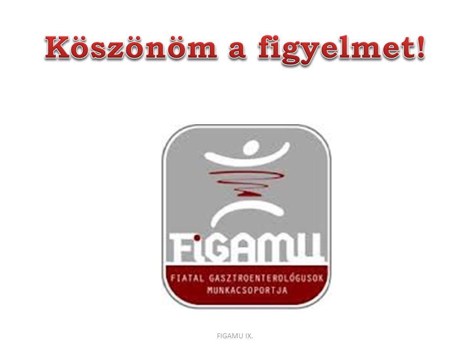 Köszönöm a figyelmet! FIGAMU IX.