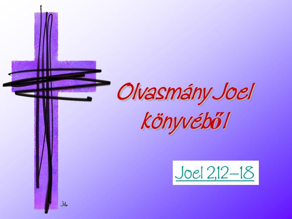 Olvasmány Joel könyvéből