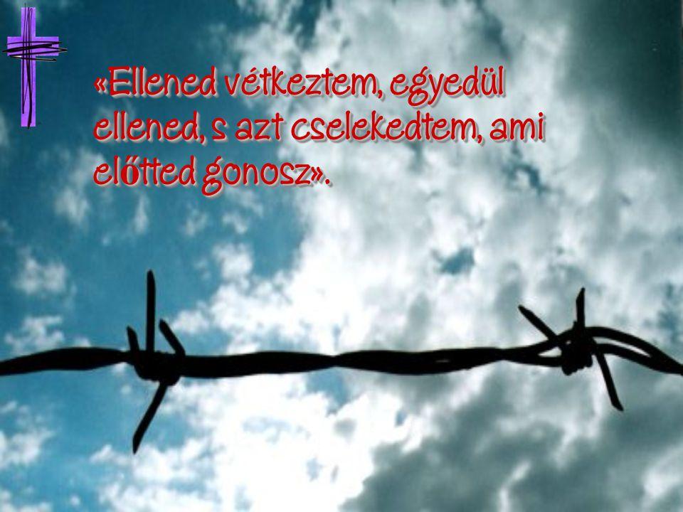 «Ellened vétkeztem, egyedül ellened, s azt cselekedtem, ami előtted gonosz».
