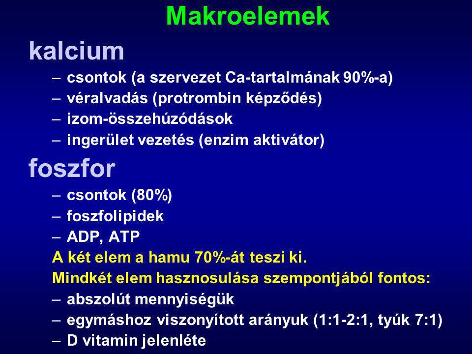 Makroelemek kalcium foszfor csontok (a szervezet Ca-tartalmának 90%-a)