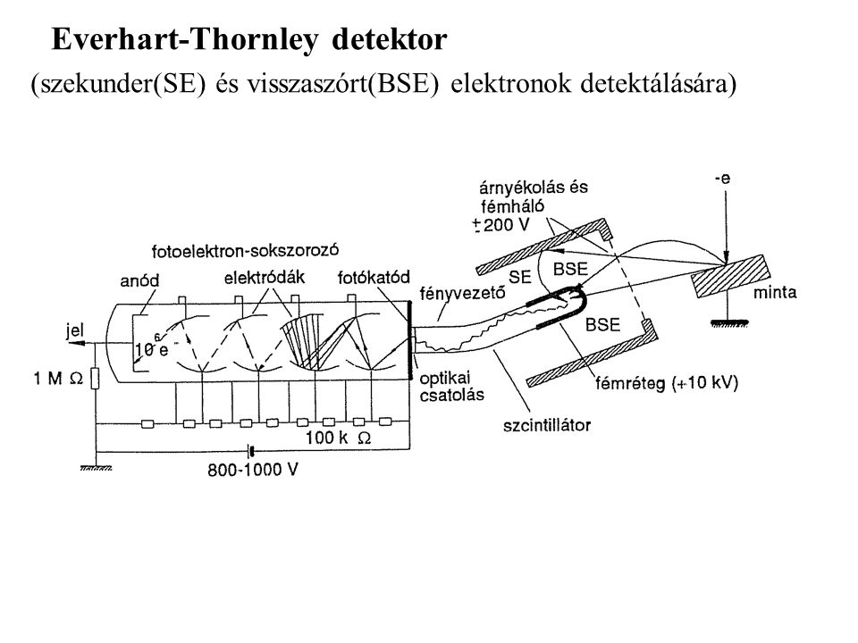 Everhart-Thornley detektor