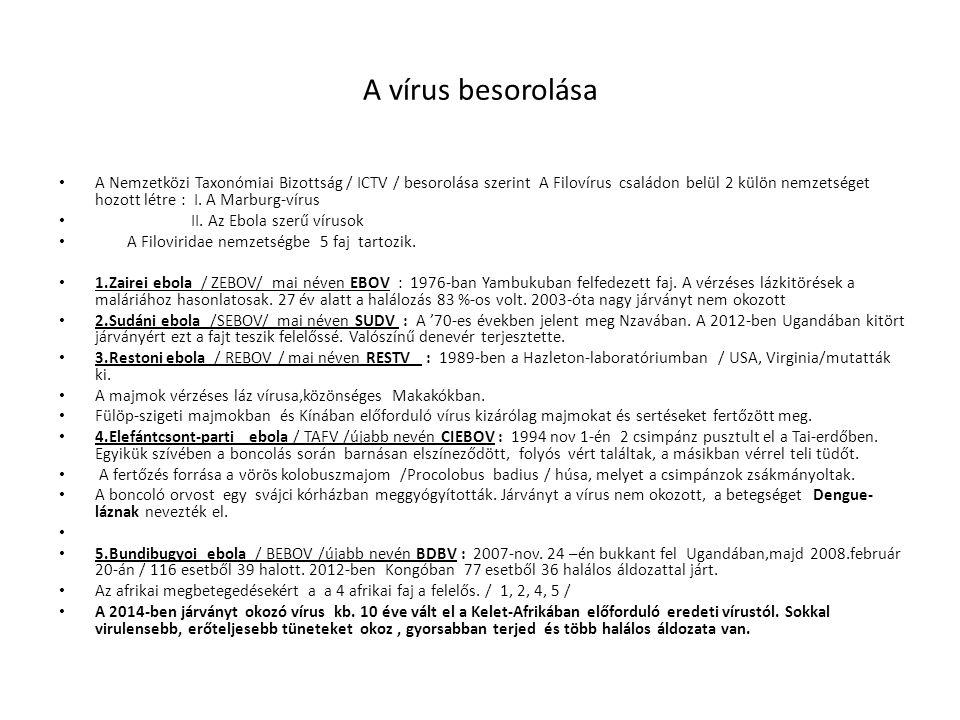A vírus besorolása