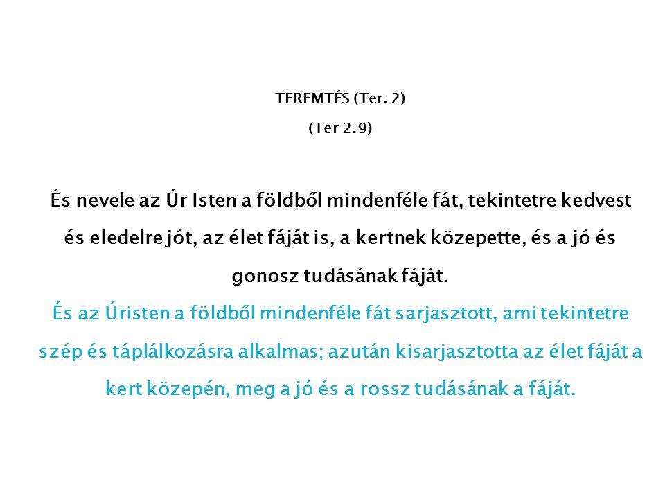 TEREMTÉS (Ter. 2) (Ter 2.9)