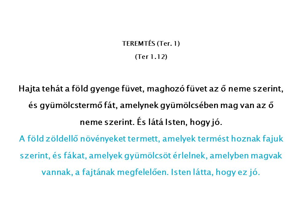 TEREMTÉS (Ter. 1) (Ter 1.12)
