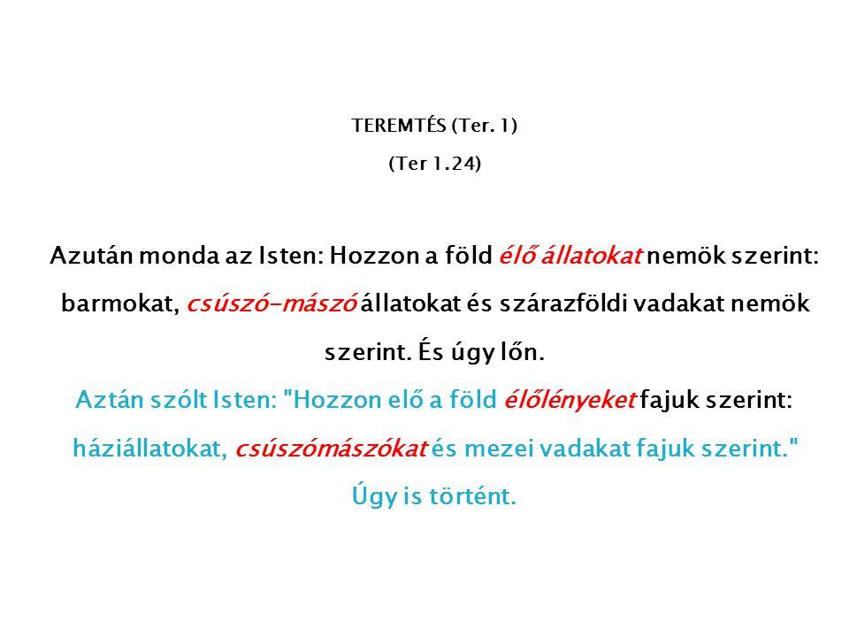 TEREMTÉS (Ter. 1) (Ter 1.24)