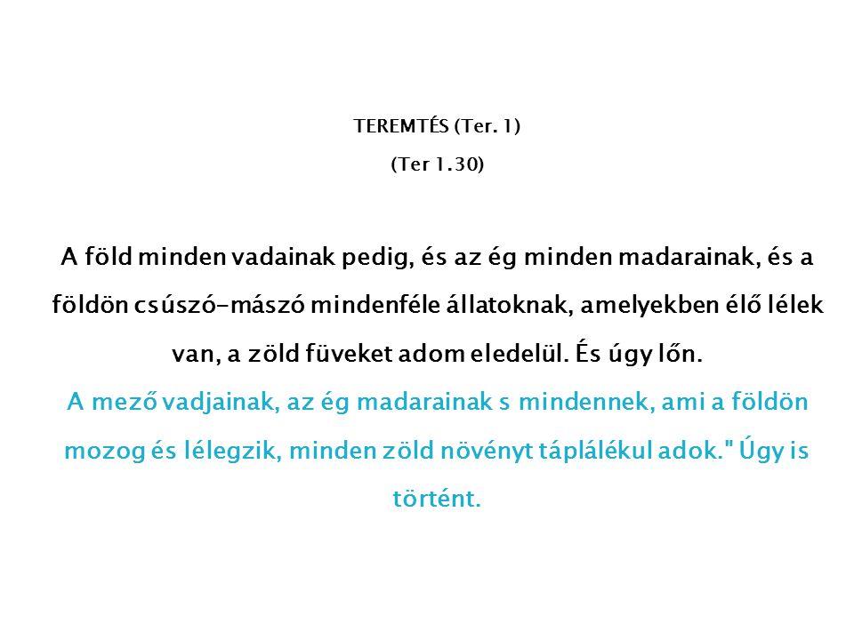 TEREMTÉS (Ter. 1) (Ter 1.30)