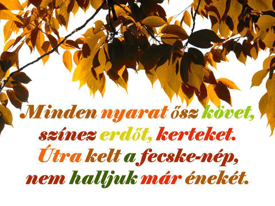 Minden nyarat ősz követ, színez erdőt, kerteket