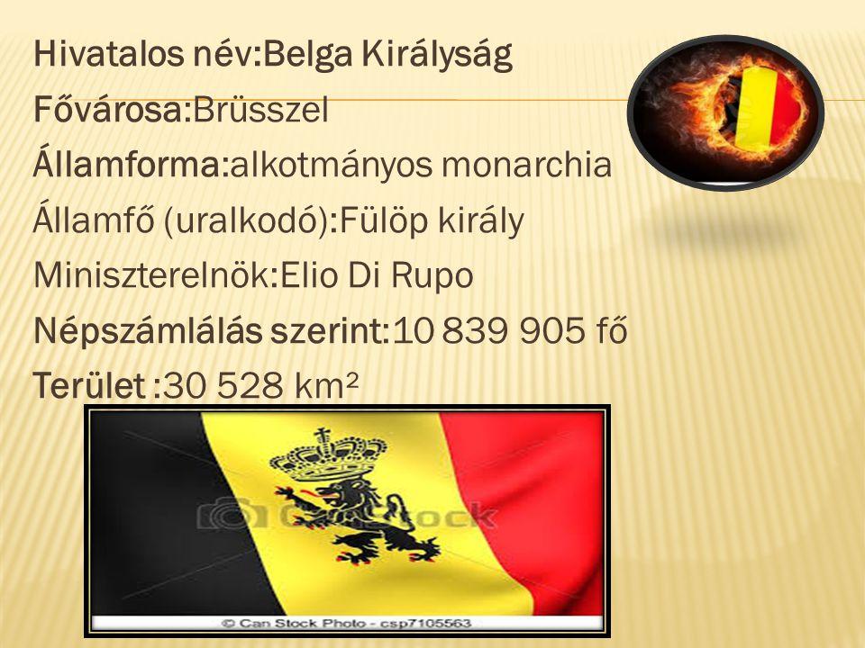 Hivatalos név:Belga Királyság Fővárosa:Brüsszel Államforma:alkotmányos monarchia Államfő (uralkodó):Fülöp király Miniszterelnök:Elio Di Rupo Népszámlálás szerint:10 839 905 fő Terület :30 528 km²