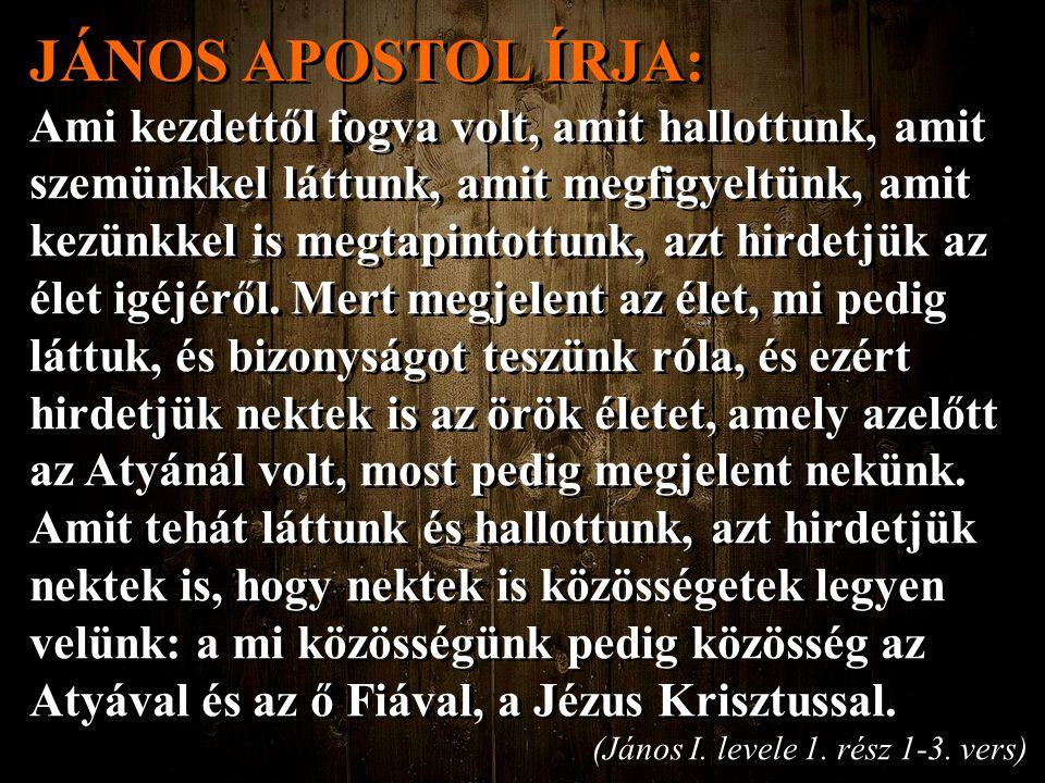 JÁNOS APOSTOL ÍRJA: