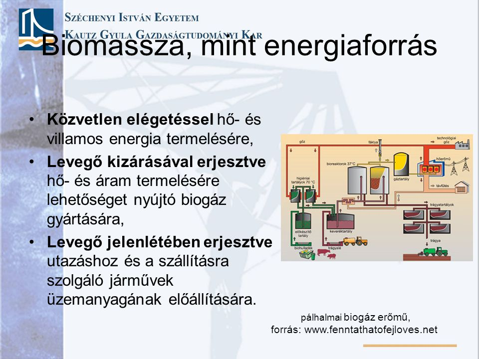 Biomassza, mint energiaforrás