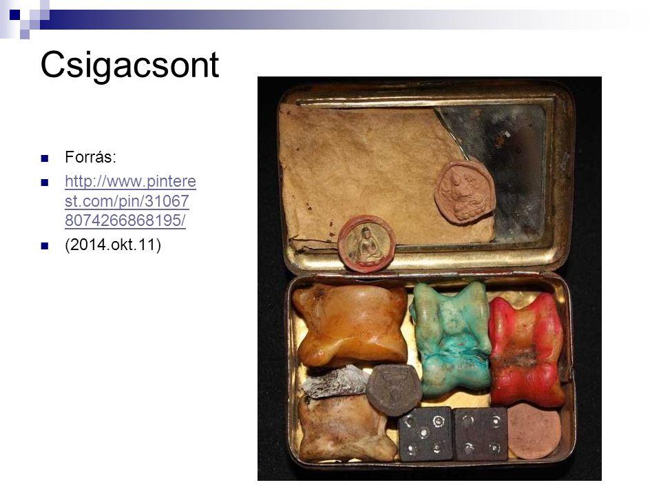Csigacsont Forrás: http://www.pinterest.com/pin/310678074266868195/
