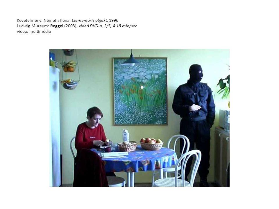 Követelmény: Németh Ilona: Elementáris objekt, 1996 Ludwig Múzeum: Reggel (2003), videó DVD-n, 2/5, 4 18 min/sec video, multimédia