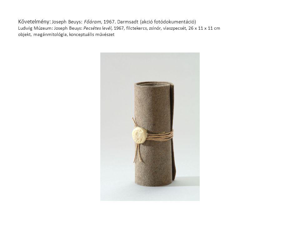 Követelmény: Joseph Beuys: Főáram, 1967