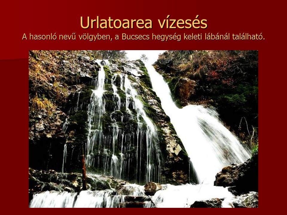 Urlatoarea vízesés A hasonló nevű völgyben, a Bucsecs hegység keleti lábánál található.