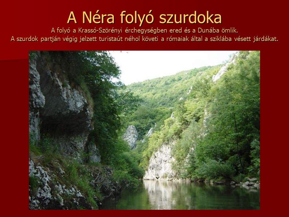 A Néra folyó szurdoka A folyó a Krassó-Szörényi érchegységben ered és a Dunába ömlik.