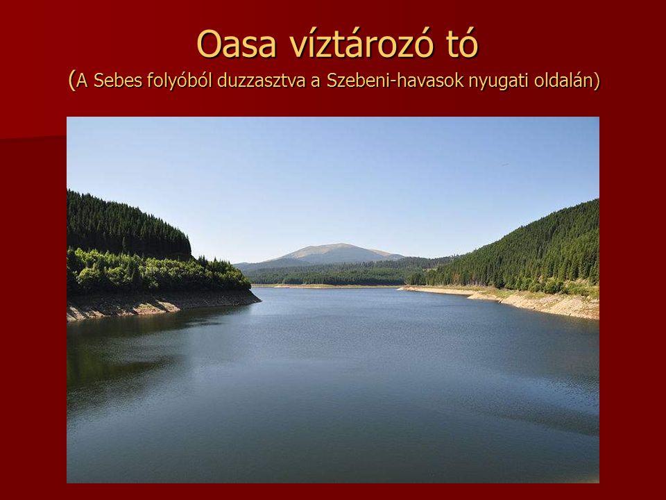 Oasa víztározó tó (A Sebes folyóból duzzasztva a Szebeni-havasok nyugati oldalán)