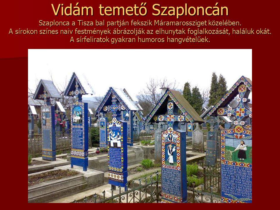 Vidám temető Szaploncán Szaplonca a Tisza bal partján fekszik Máramarossziget közelében.