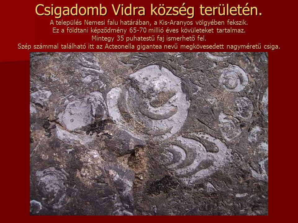 Csigadomb Vidra község területén