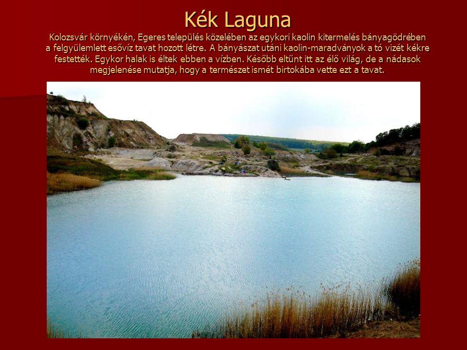 Kék Laguna Kolozsvár környékén, Egeres település közelében az egykori kaolin kitermelés bányagödrében a felgyülemlett esővíz tavat hozott létre.