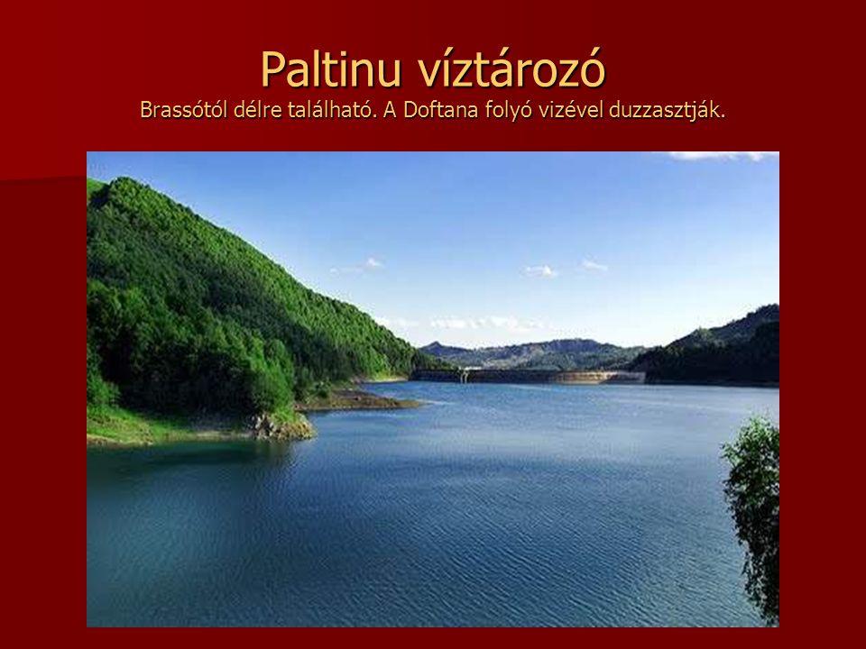 Paltinu víztározó Brassótól délre található
